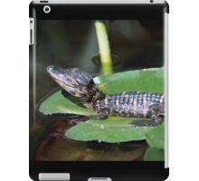 Smiling Baby Alligator Sleeping on Lilly Pad iPad Case/Skin