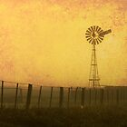 'Windmill dawn' - near Warooka S.A. by Steph Ball