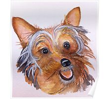 Yorkshire Terrier from the Waterfowl Festival Poster