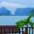 View from Koh Pan-yi fishing village by Alina Holgate
