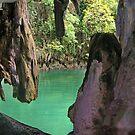 Phang nga bay cave by Alina Holgate