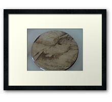 newborn foal and mare bonding Framed Print