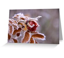 Winter jewel Greeting Card