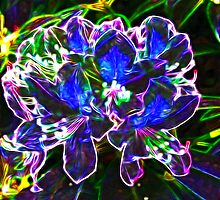 A Psychedelic Rhododendrum by Trevor Kersley
