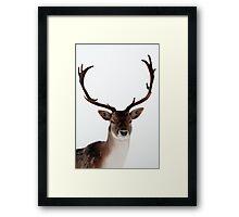 Winter Stag 1 Framed Print