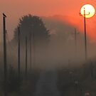 Misty Mornings in Monterosi, Italy by Deborah Downes