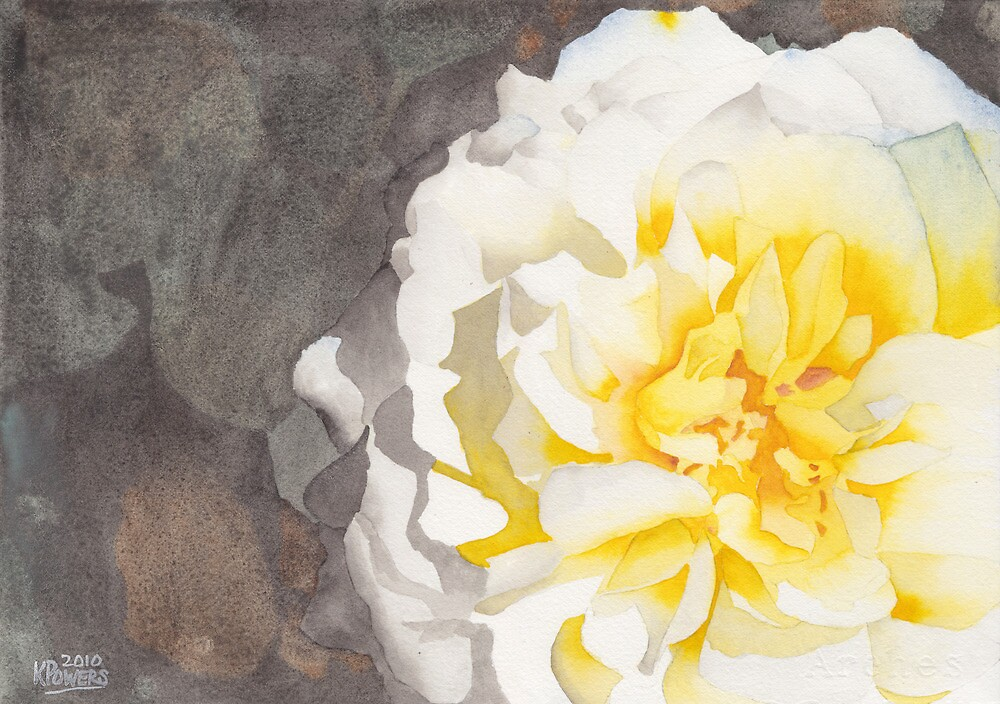 Point Defiance White Flower by Ken Powers