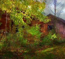 Hidden Treasure by Sharon Batdorf