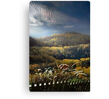 Over the Fence Canvas Print