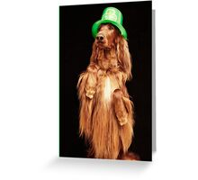 Irish Charmer Greeting Card