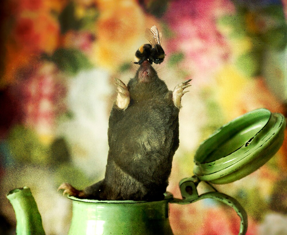 Mr.Mole and Mr.Bee and a rather green pot of tea by borzoi1