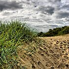 Sand Dune by Brian Beckett