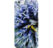 Globe Thistle and visitor iPhone Case/Skin