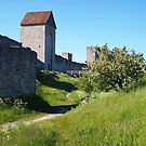 Visby's medieval city walls by jayview