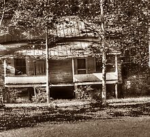 Eastatoe Valley Old Homeplace by Roger Jewell