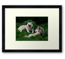 Grey Wolf, wild Dog Framed Print