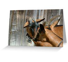 Kissing goats Greeting Card