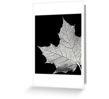 Maple Leaf in black/white cropped Greeting Card