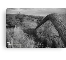 Old Thatch and Summer Grasslands - Killbegs, County Donegal. Canvas Print
