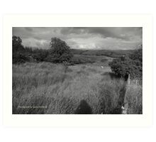 Summer Evening Shadow - County Donegal Landscape. Art Print
