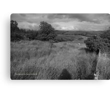 Summer Evening Shadow - County Donegal Landscape. Canvas Print