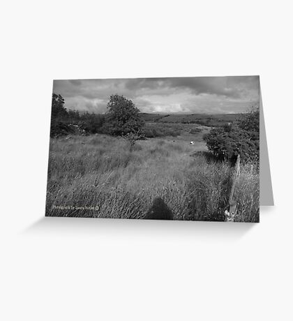 Summer Evening Shadow - County Donegal Landscape. Greeting Card