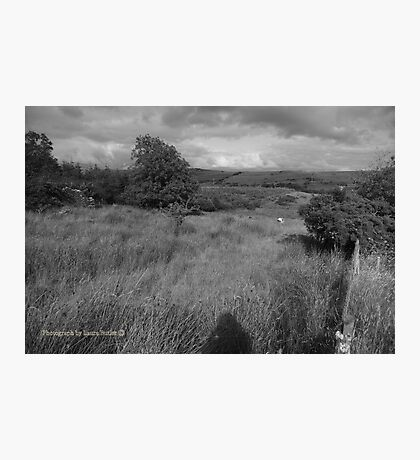 Summer Evening Shadow - County Donegal Landscape. Photographic Print