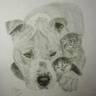 Bindi the American Pit Bull Terrier & His Little Friends by Istvan Natart