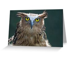 The Intense Yellow-eyed Stare Greeting Card