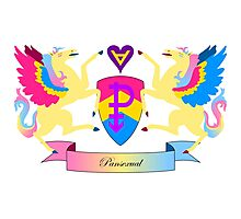 Pansexual Crest Photographic Print