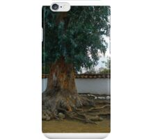 Raices de Eucaliptus..... iPhone Case/Skin