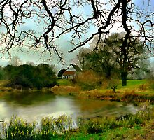 Butler's Retreat, Epping Forest, UK by Kurt  Van Wagner