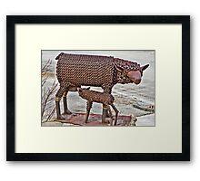Steel Wool Framed Print