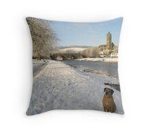 zak in  snowy peebles  2010 Throw Pillow