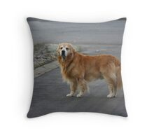 Waiting Patiently! Throw Pillow