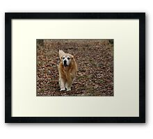 I'm Right Behind You Ma! Framed Print