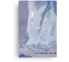 Emperor Penguins & Iceberg Canvas Print