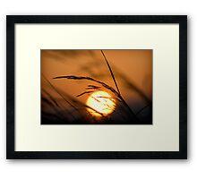 Eclipse Framed Print