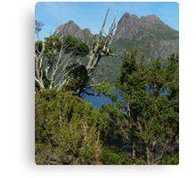 Captivating Cradle Mountain Canvas Print