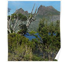 Captivating Cradle Mountain Poster