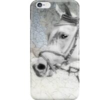 Silver Lady iPhone Case/Skin