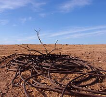 Desolation  by Penny Kittel