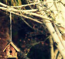 My little house by Joshua Greiner