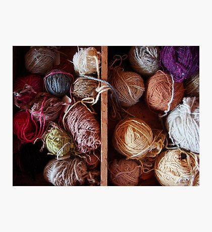 Knit Song III Photographic Print