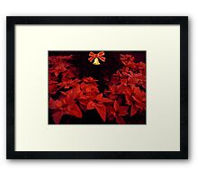 Red Poinsettia Framed Print