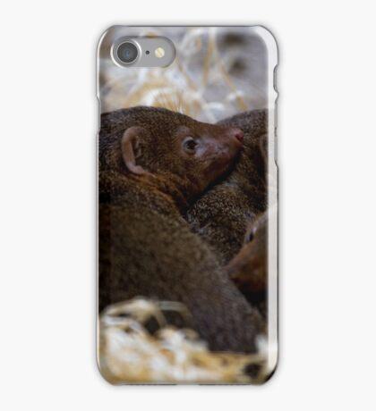 Dwarf Mongoose iPhone Case/Skin