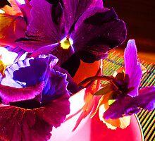 Vibrant Teacups by daisyriding