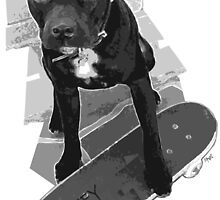 SK8 Staffy Dog black and white by amanda metalcat dodds