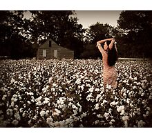 Southern Serenity Photographic Print
