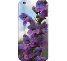 Summer Wildflowers iPhone Case/Skin